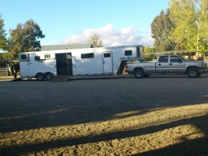 This is how they transport horses in California - David's trailer.